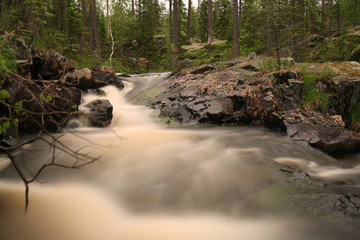 Natural river, nature reserve in Sweden