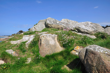 Ciel bleu, rochers et fleurs en Bretagne