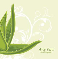 Decorative background with aloe vera