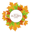 Abstract Autumn Background Pattern Template