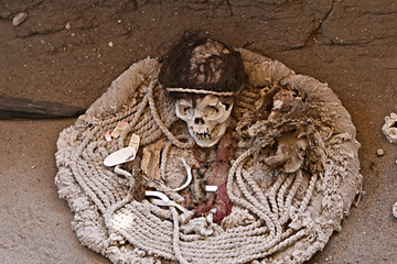 Ancient Skull and Fabric