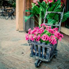 colorful flowers in the wheelbarrow