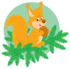 Little squirrel with a cone on a fir branch