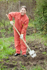 Happy  mature woman planting fruit tree