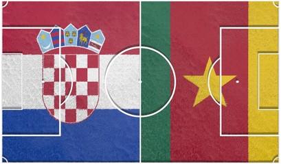 croatia vs cameroon group a world cup 2014 football field