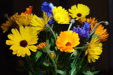 Beautiful bouquet of flowers with colorful petals