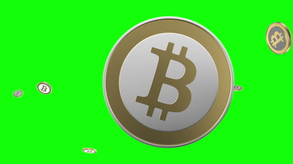 Detailed bitcoin animation bundle