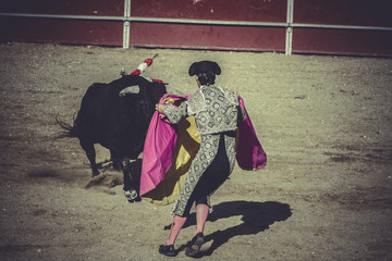 entertainment bullfight, traditional Spanish party where a matad