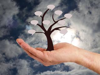 hand holding tree