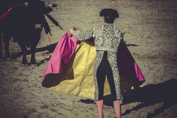 fighter, bullfight, traditional Spanish party where a matador fi