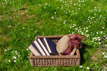 Wicker basket full of books and retro hat in lawn
