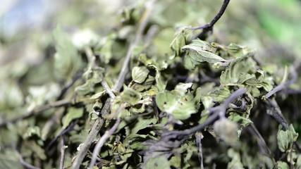 Heap of dried Mint