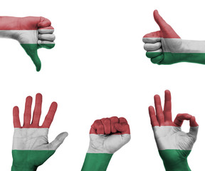Hand set with the flag of Hungary