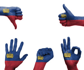 Hand set with the flag of Liechtenstein
