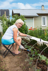 An elderly woman is engaged in weeding in garden