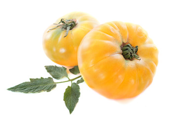 pineapple tomatoes