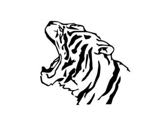 testa di tigre stilizzata su sfondo bianco