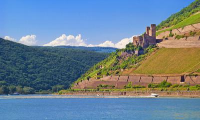 Burg Ehrenfels am Rheinknie