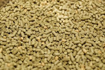 Hops pellets used for brewing beer