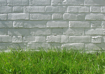 white brick wall on grass