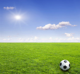 soccer field green natural grass