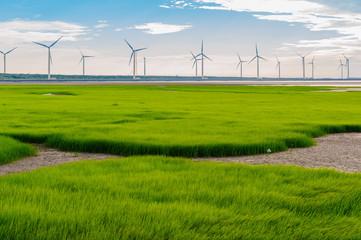 sillouette of Wind turbine array at seashore wetland