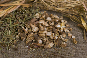 Dried wild chicory (dry medicinal herbs)