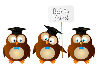 Funny student owls isolated on white