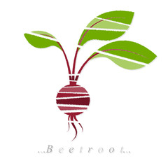 Vector of vegetable, beetroot icon on isolated white background