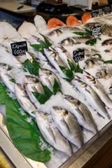 Choise of fish on market display