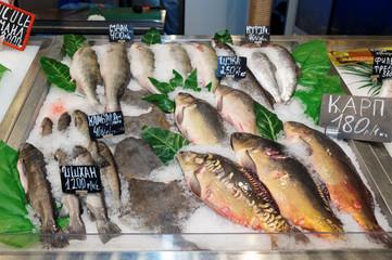 Choice of fish at market