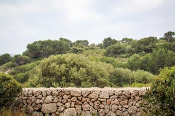 Steinmauer als Grenze