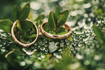 Wedding-ring on green