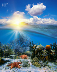 Sky sunset and underwater corals with sea stars