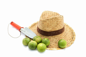 Straw hat and hand trowel and limes on white