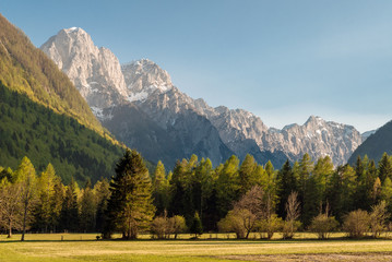 View of Slovenian Alps in spring