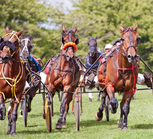 Fotobehang Paardrijden Trotting Race Synod Inn Cardigion