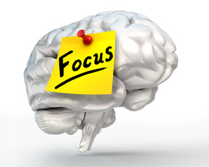 focus word note paper on brain
