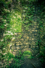 Backdrop image of stone castle walls covered in greenery