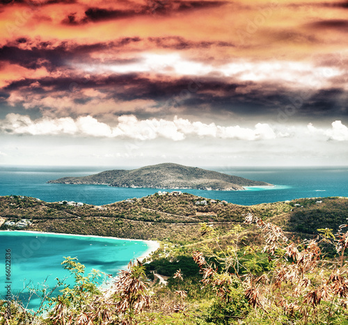 Foto op Canvas Caraïben Caribbean Island with forest and ocean