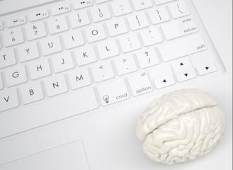 White brain on the keyboard
