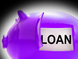 Loan Piggy Bank Message Means Money Borrowed Or Creditor poster