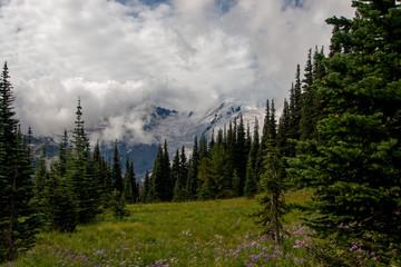 Mt Rainier in the Clouds