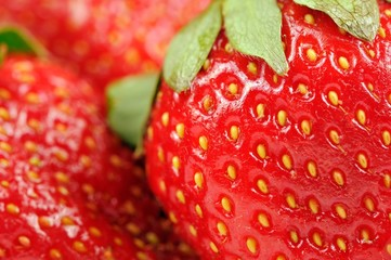 Red Strawberries Close-Up