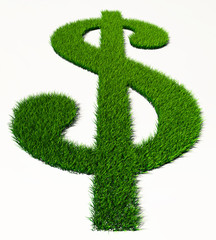 green grass dollar symbol