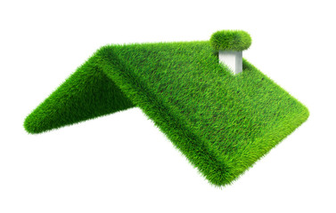 green grass house roof