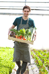 Young happy farmer with a crate full of vegetable