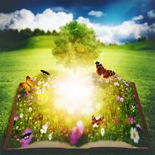 Ouvrir le livre avec Arbre de la Connaissance, backgro environnement abstrait