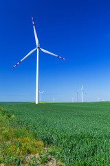 Wind turbines on the summer meadow over blue sky