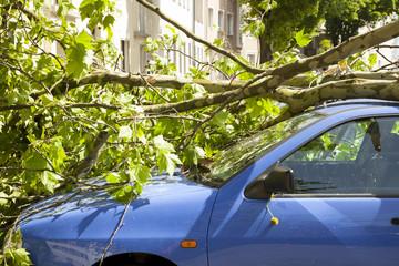 Auto mit Glasschaden und Karosserieschaden nach Sturm Orkan